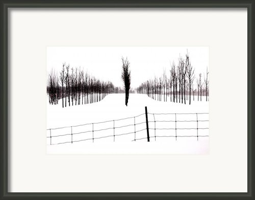 White Lines Fenced In  Framed Print By Russell Styles