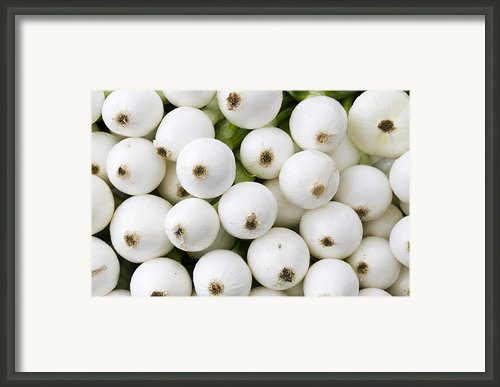 White Onions Framed Print By John Trax