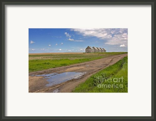 White Sheds On A Prairie Farm In Spring Framed Print By Louise Heusinkveld
