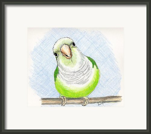 Who Me Framed Print By Laurilee Taylor