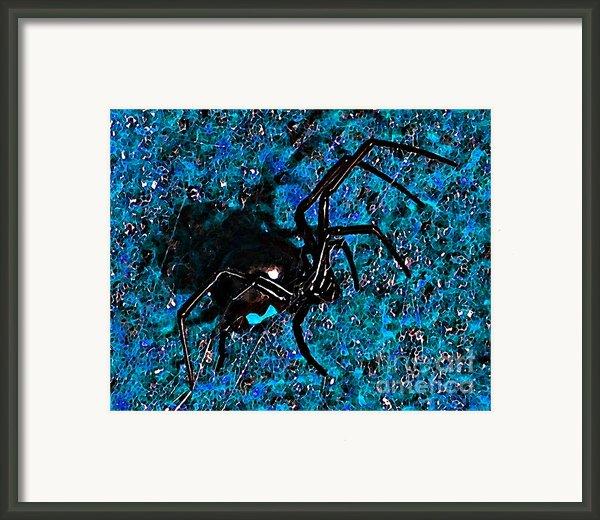 Wicked Widow - Blue Framed Print By Al Powell Photography Usa