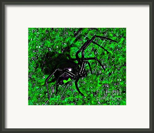 Wicked Widow - Green Framed Print By Al Powell Photography Usa