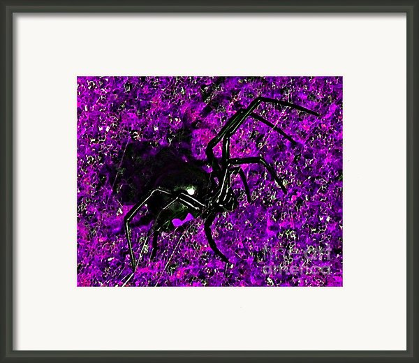 Wicked Widow - Purple Framed Print By Al Powell Photography Usa