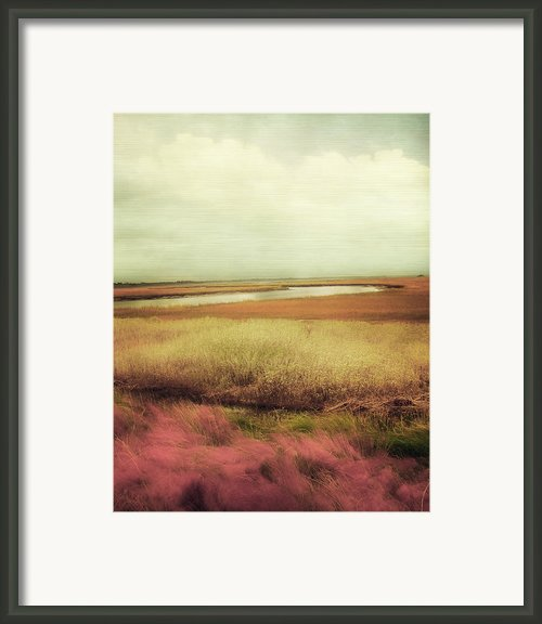 Wide Open Spaces Framed Print By Amy Tyler
