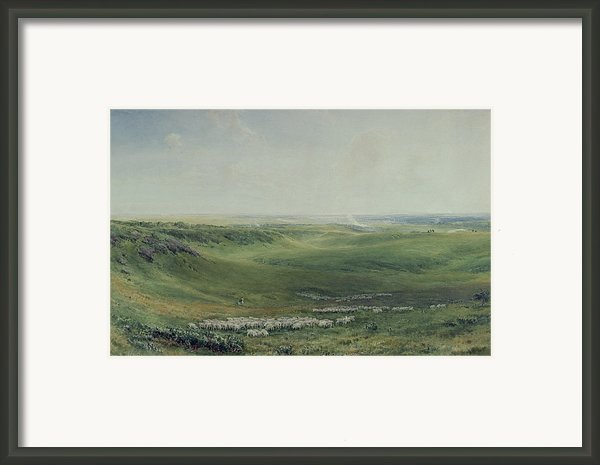 Wide Pastures Framed Print By Thomas Collier