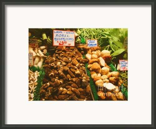 Wild Morell Mushrooms Framed Print By Lydia L Kramer