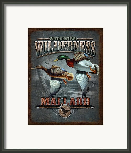 Wilderness Mallard Framed Print By Jq Licensing