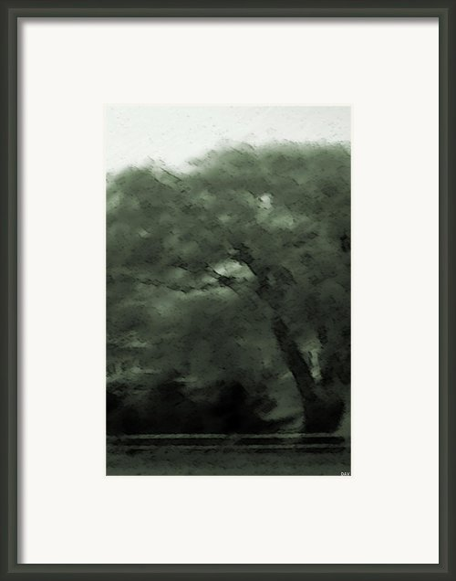 Willow Green Framed Print By Debra     Vatalaro
