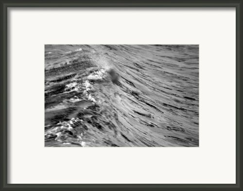 Wind Swept Framed Print By Brad Scott