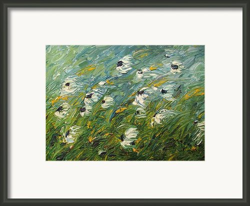 Wind Swept Daisies Framed Print By Robert Laper