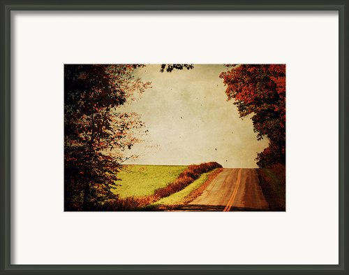 Windy Journey Framed Print By Emily Stauring