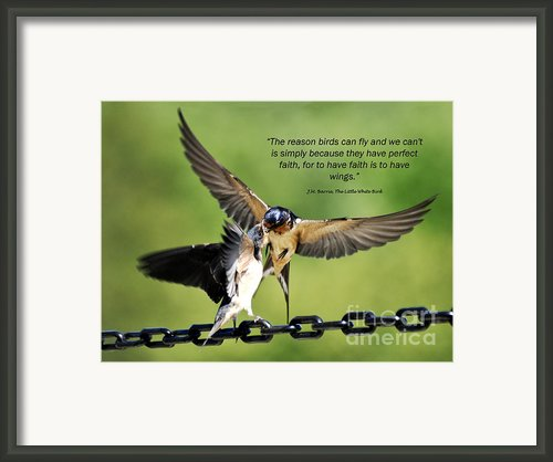 Wings Of Faith Framed Print By Diane E Berry