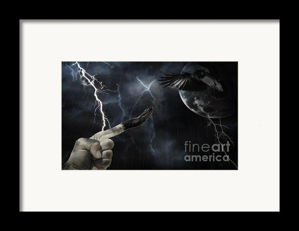 Winner Takes All Framed Print By Joanne Kocwin