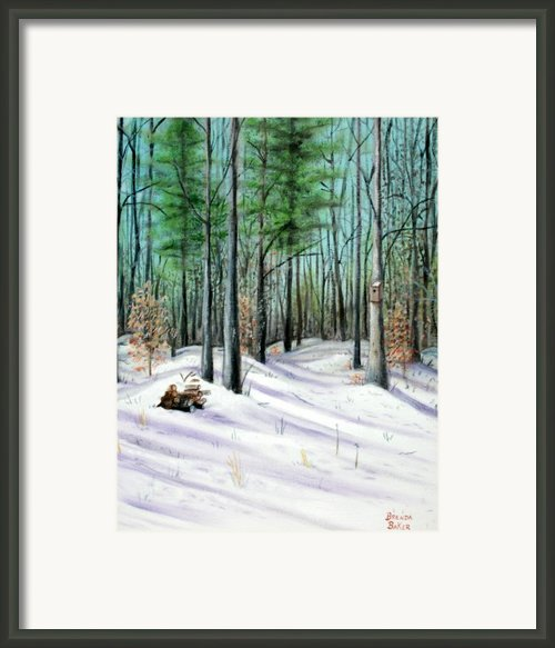 Winter Afternoon Framed Print By Brenda Baker