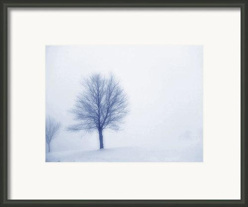 Winter Blues Framed Print By Randy Steele
