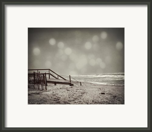 Winter In Florida Framed Print By Mario Celzner