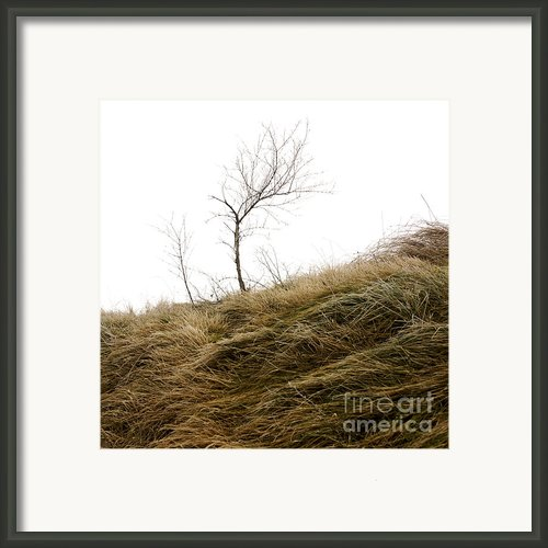 Winter Landscape Framed Print By Bernard Jaubert