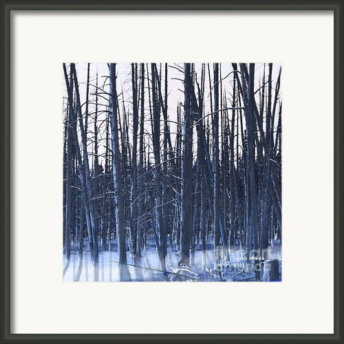Winter Trees Framed Print By Author And Photographer Laura Wrede