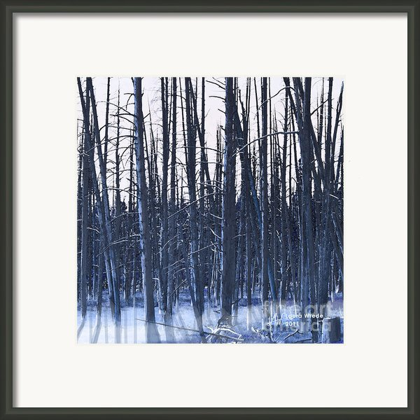 Winter Trees Framed Print By Artist And Photographer Laura Wrede