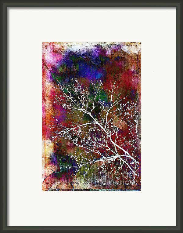 Winter Wishes Framed Print By Judi Bagwell