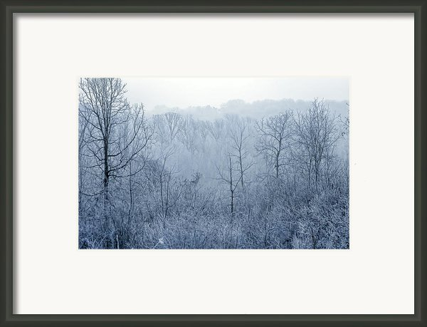 Winter Wonderland Framed Print By Scott Norris