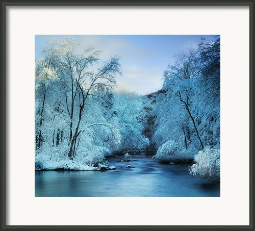 Winter Wonderland Framed Print By Thomas Schoeller