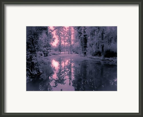 Winterland In The Swamp Framed Print By Digiart Diaries By Vicky Browning