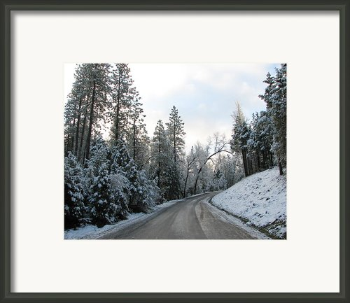 Winters Walk Framed Print By Lydia Warner Miller