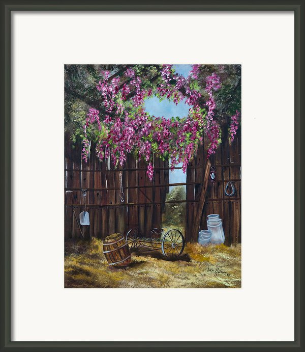 Wisteria Framed Print By Jan Holman