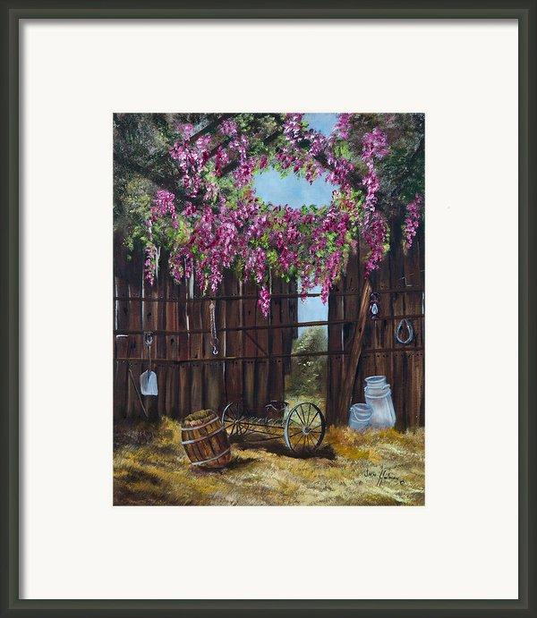 Wisteria Framed Print By Jan Holman