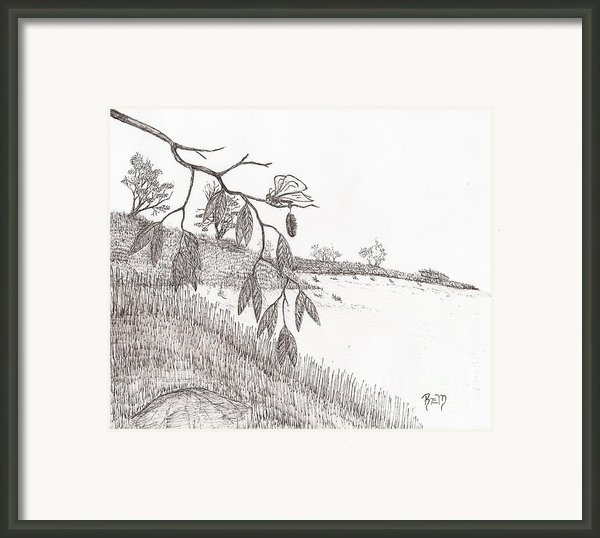 With New Wings... - Sketch Framed Print By Robert Meszaros