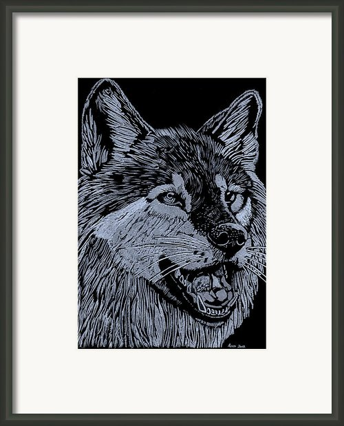 Wolfie Framed Print By Jim Ross