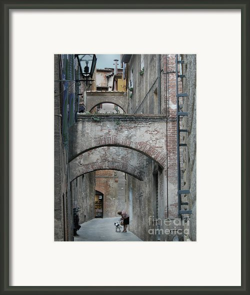 Woman With Dog Siena Framed Print By Jim Wright