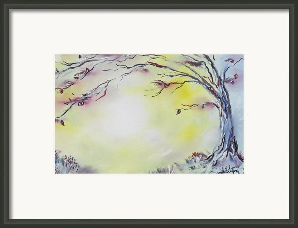 Wonderland Bliss Framed Print By Joseph Palotas