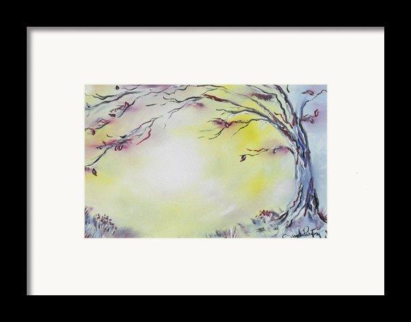 Wonderland Bliss Framed Print By Joseph Palotas