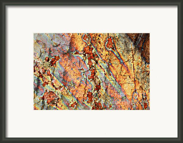 Wood And Rust Framed Print By Carol Groenen
