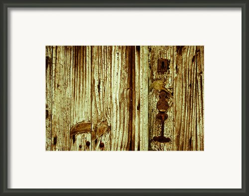 Wood Grain Framed Print By Georgia Fowler