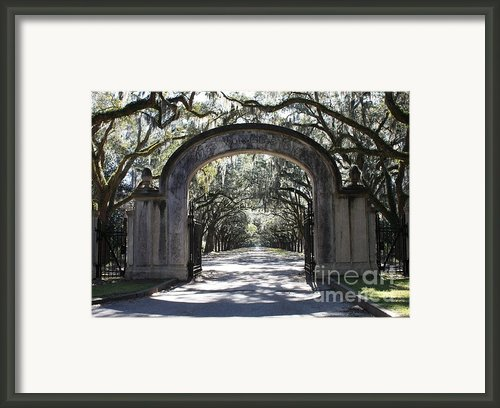 Wormsloe Plantation Gate Framed Print By Carol Groenen