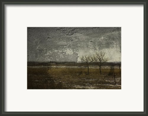 Worn Out Framed Print By Larysa Luciw