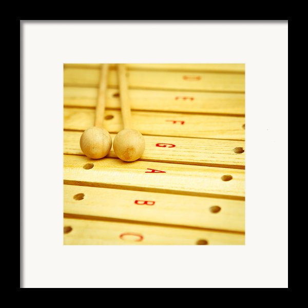 Xylophone Framed Print By Tom Gowanlock