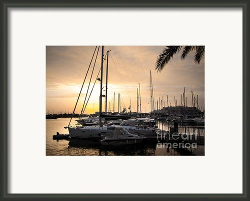 Yachts At Sunset Framed Print By Carlos Caetano