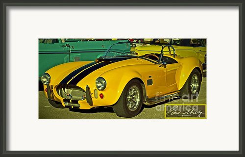 Yellow Cobra Framed Print By Gwyn Newcombe