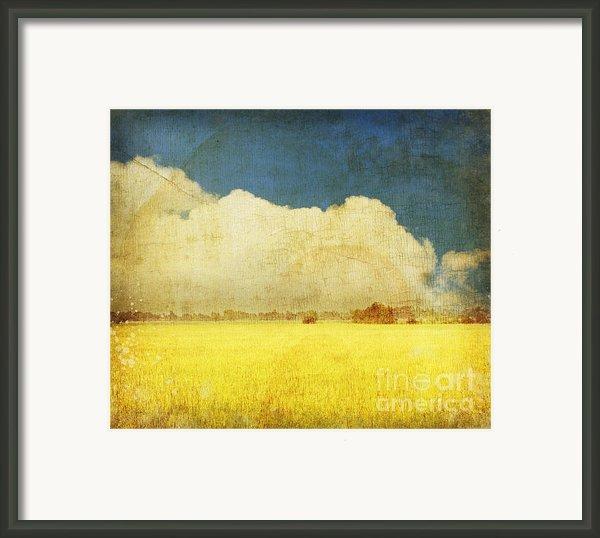 Yellow Field Framed Print By Setsiri Silapasuwanchai