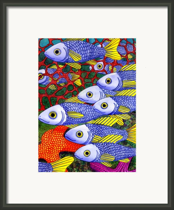 Yellow Fins Framed Print By Catherine G Mcelroy