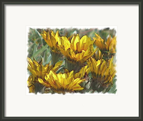 Yellow  Framed Print By Laurianne Nash