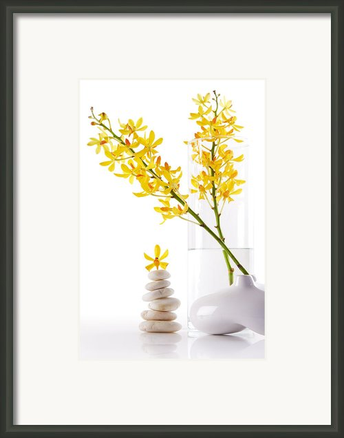 Yellow Orchid Bunchs Framed Print By Atiketta Sangasaeng
