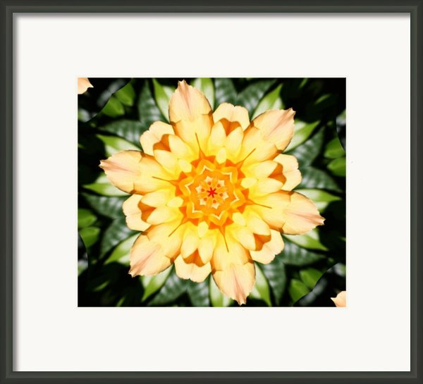 Yellow Rose Kaleidoscope  Framed Print By Cathie Tyler