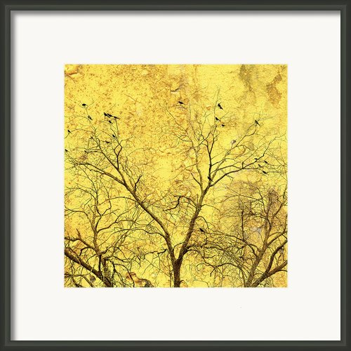 Yellow Wall Framed Print By Skip Nall