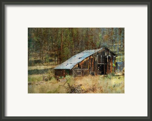 Yesteryear Shed 2 Framed Print By Dale Stillman