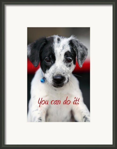 You Can Do It Framed Print By Amanda Barcon